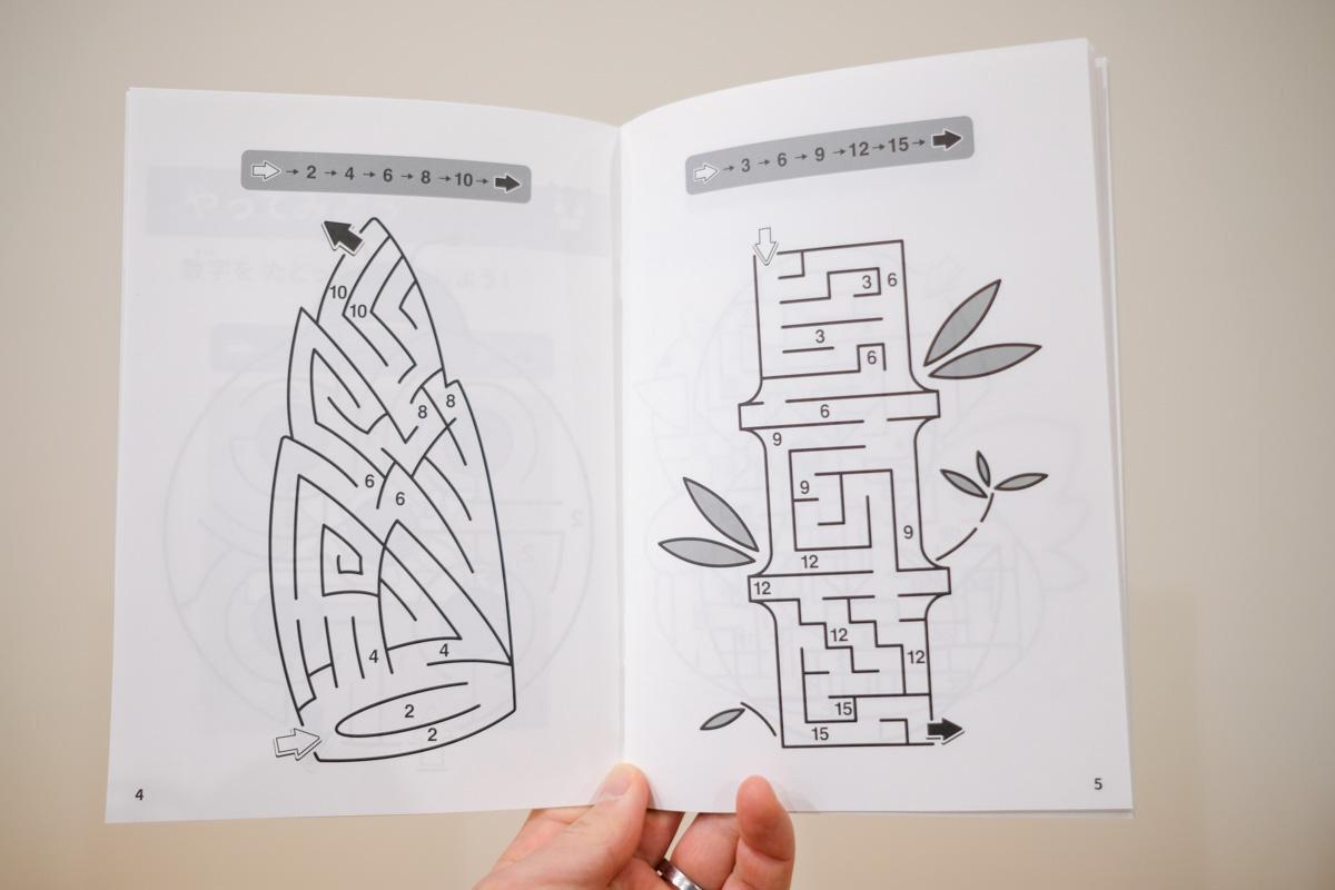 ワンダーボックスvol.ナイルのハテニャンのパズルノートの迷路