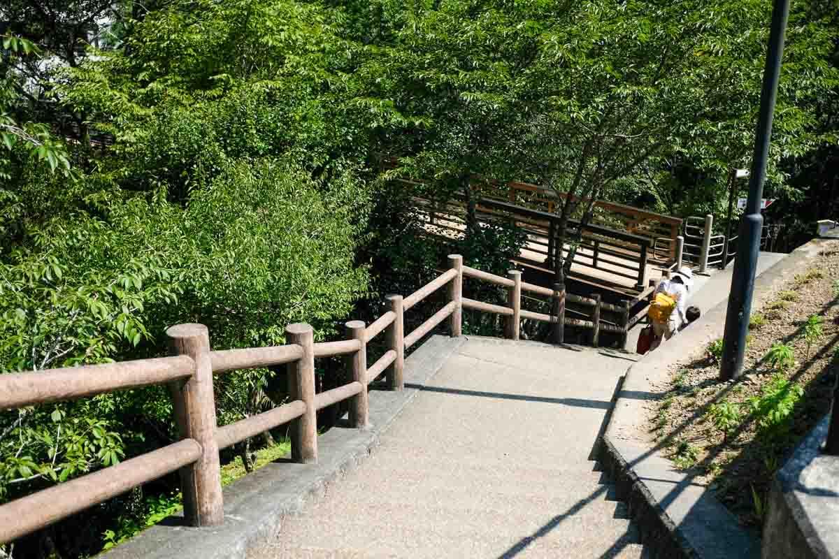 霧の森駐車場から川におりる階段2
