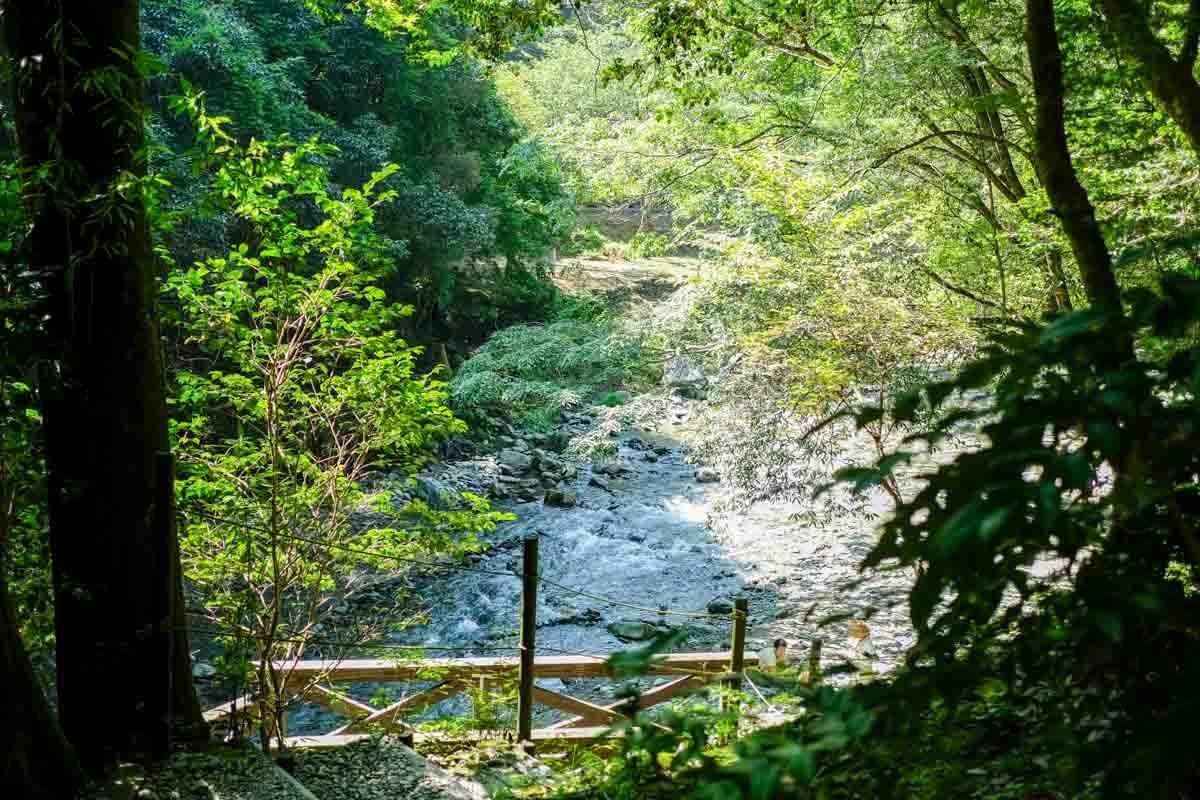 聴水の道途中からの景色