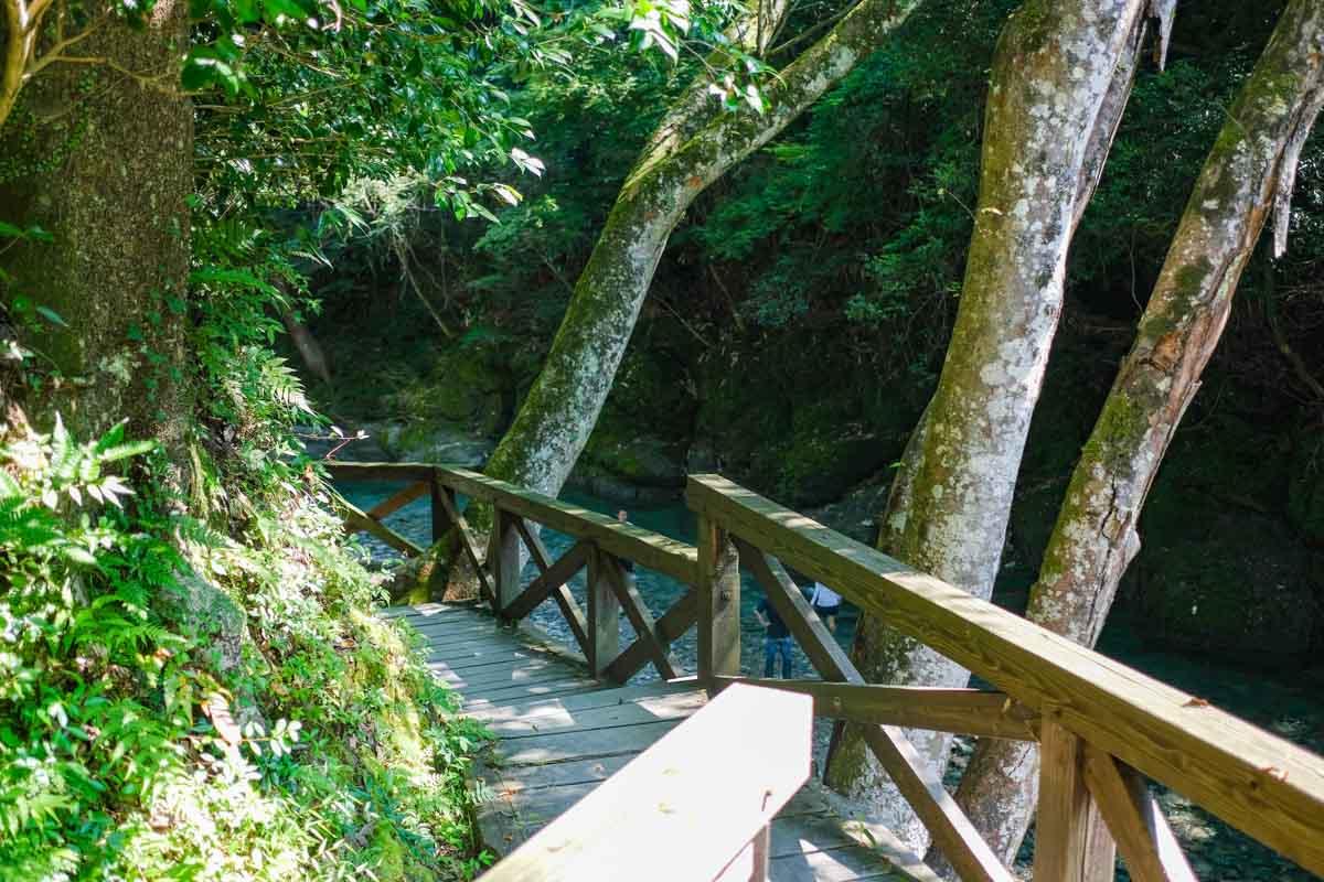 聴水の道の木製通路